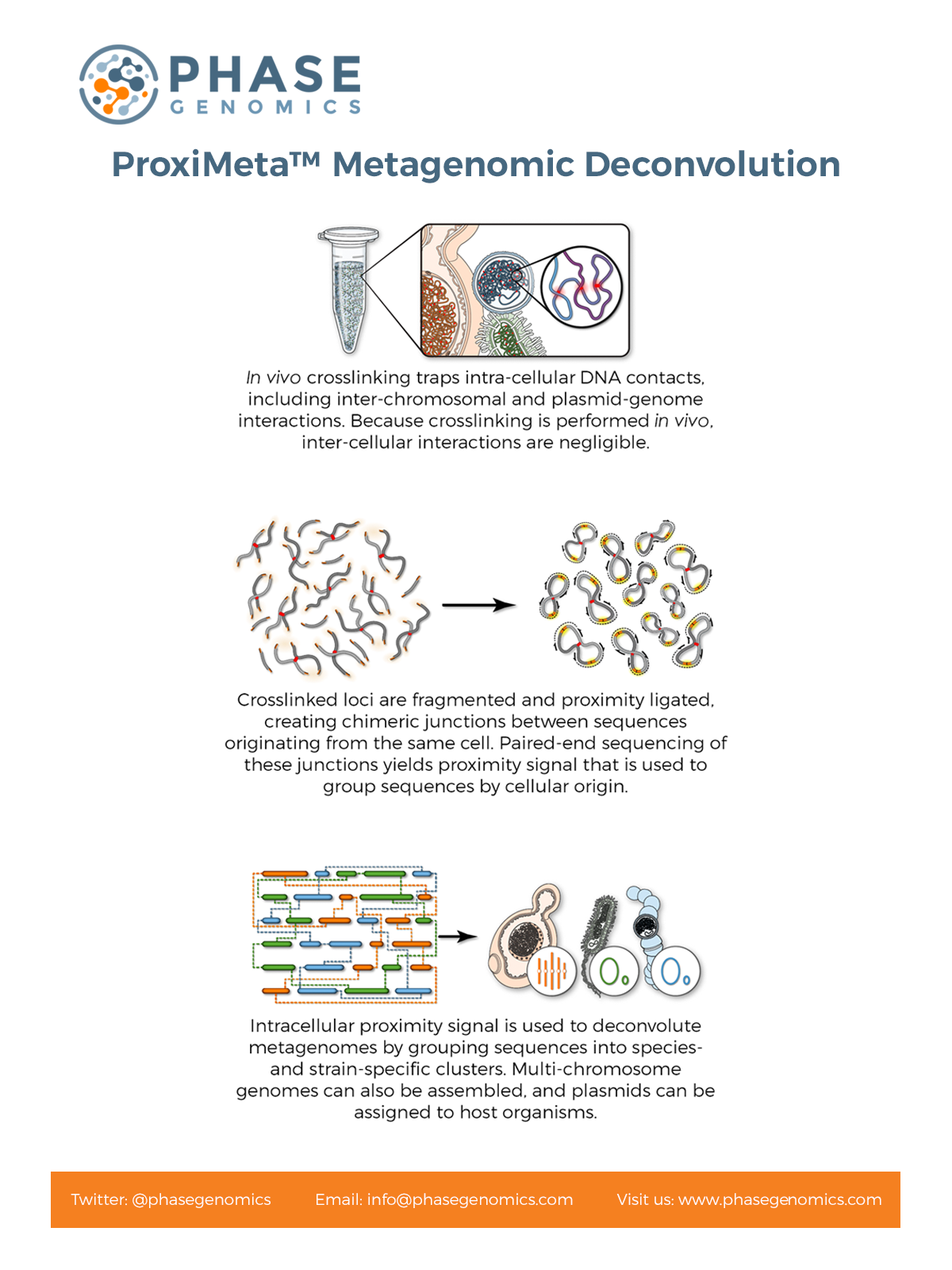 Metagenomic Process